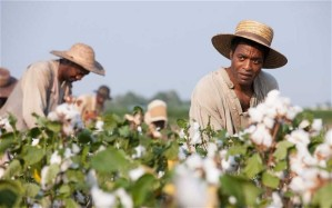 12 Years a Slave- Picking cotton