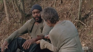 The Grove- Carol applies sap to Tyreese's wound