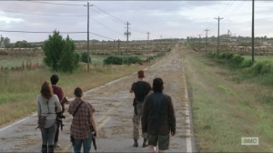 Self-Help- Group finds herd of walkers blocking their path
