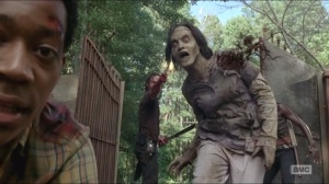 What Happened and What's Going On- Rick shoots walker in slow motion