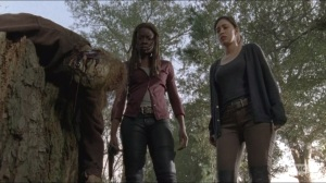 Try- Michonne and Rosita find a walker executed by Sasha