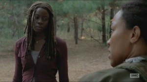 Try- Michonne sees shades of her former self in Sasha
