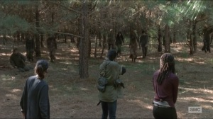 Try- Rosita, Sasha, and Michonne take out walkers