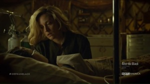 From Dancing Mice to Psychopaths- Delphine cares for Cosima