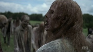 Evolution- Walker in the middle of the herd- The Walking Dead, AMC