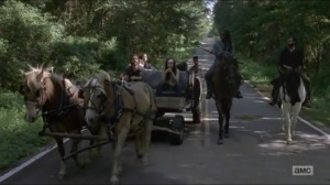 Stradivarius- Michonne and Siddiq taking Magna's group to the Hilltop- The Walking Dead, AMC