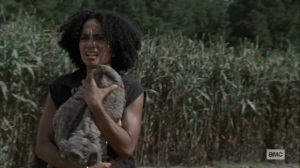Bounty- Connie rescues the baby- AMC, The Walking Dead
