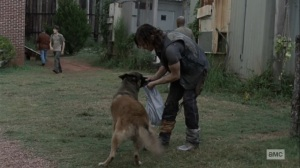 Bounty- Searching for Henry- AMC, The Walking Dead