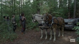 Scars- Michonne offers to take Daryl's group to the Kingdom- AMC, The Walking Dead
