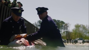 Marital Feats of Comanche Horsemanship- American Hero Story, police take body out of water- HBO, Watchmen