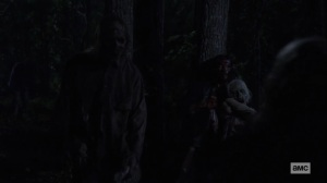 Bonds- Daryl covers himself in walker blood and hides from walkers- AMC, The Walking Dead