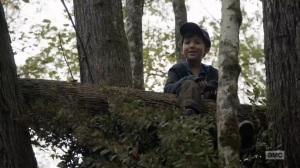 Home, Sweet Home- Hershel in a tree- AMC, The Walking Dead
