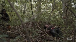 Home, Sweet Home- Taking fire from the Reapers- AMC, The Walking Dead