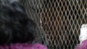 Splinter- Eugene tells Princess to go back into her boxcar- AMC, The Walking Dead