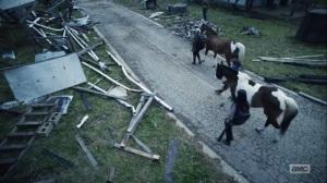 Hunted- Bringing horses back to Alexandria- AMC, The Walking Dead