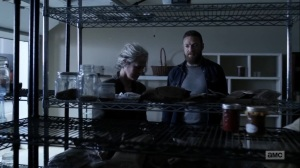 Hunted- Carol tells Aaron that she's going to find the horses- AMC, The Walking Dead
