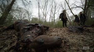 Hunted- Finding dead horses- AMC, The Walking Dead
