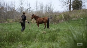 Hunted- Magna, Carol, Rosita, and Kelly find a horse- AMC, The Walking Dead