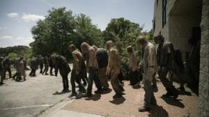 Promises Broken- Walker herd grows- AMC, The Walking Dead